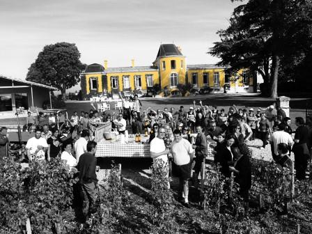 Bordeaux Harvest at Lafon Rochet Harvest in St. Estephe